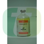 Ilfacillin PS, 100 ml